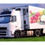 Грузоперевозки: перевозка продуктов питания. Гидравлическая тележка