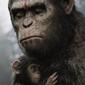 Empire выложили новый кадр из «Планеты обезьян Война» (ФОТО)