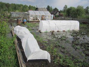 Как уберечь участок от затопления: основные способы